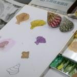 2018年8月22日(水)「色紙に貝殻を描こう」