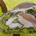 鳥の巣の絵ギャラリー