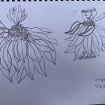 C.Mさん「ドレスみたいな花」
